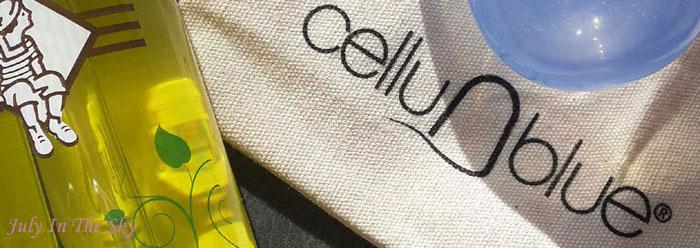 blog beauté ce que la blogosphere m'a fait acheter cellulite ventouse cellublue