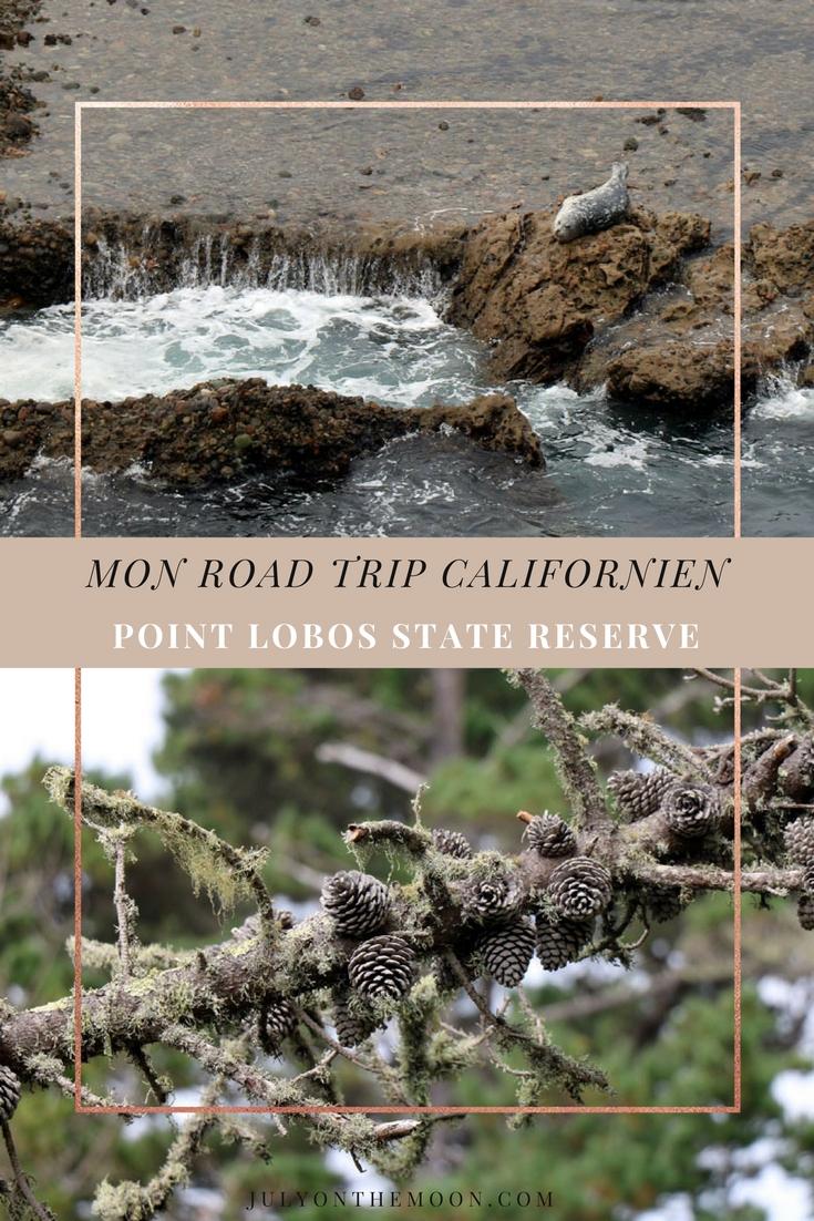 Blog Photographie Voyage USA Californie Point Lobos