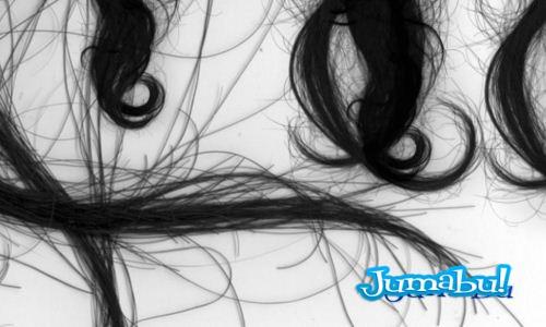 pinceles-cabellos