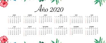 calendario floral 2020 en espanol 1 - Calendario 2020 en español con estilo floral