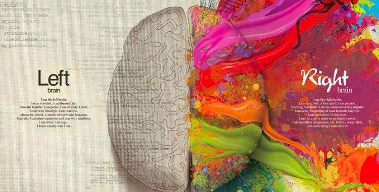 cerebro de un artista - 20 curiosidades sobre el diseño gráfico