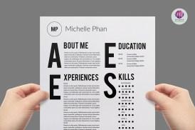 curriculum vitae disenador grafico - Modelo 2015 de Curriculum Vitae Tipográfico
