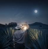 mescal hombre campo