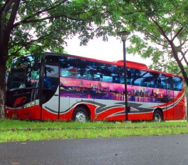 bus pariwisata evolution