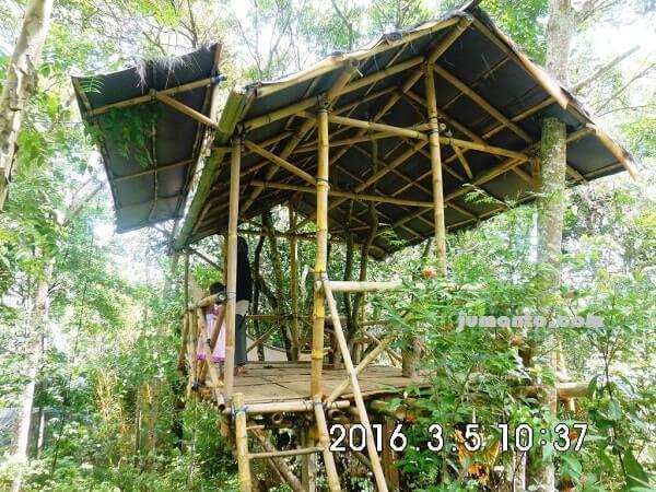 foto taman kupu kupu kemiling lampung dengan rumah pohon bambunya