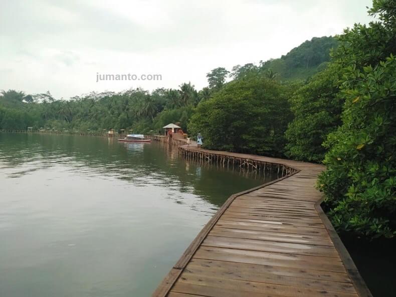 foto liburan ke hutan bakau lampung