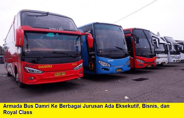 info lengkap bus damri bekasi lampung pp