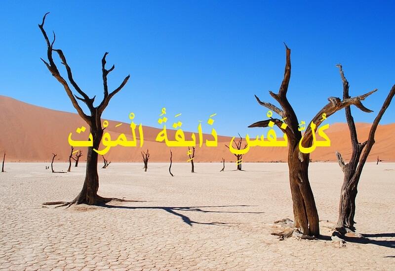 gambar Kullu Nafsin Dzaiqotul Maut Tulisan Arab, Arti, Surat dan Ayatnya