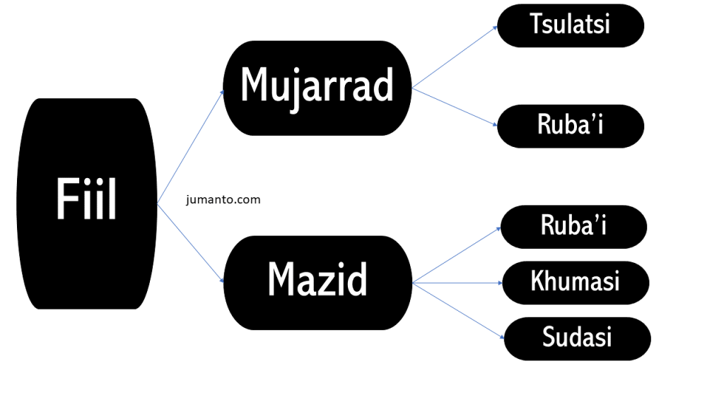 fiil mujarrod dan mazid pembagian fiil berdasarkan huruf asli madhinya