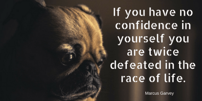 if-you-have-no-confidence-in-yourself-you-are-twice-defeated-in-the-race-of-life