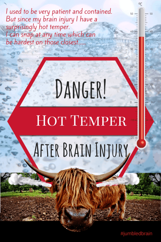 I was very patient and contained. But since my brain injury I have a surprisingly hot temper. I can snap at any time which can be hard on those closest.