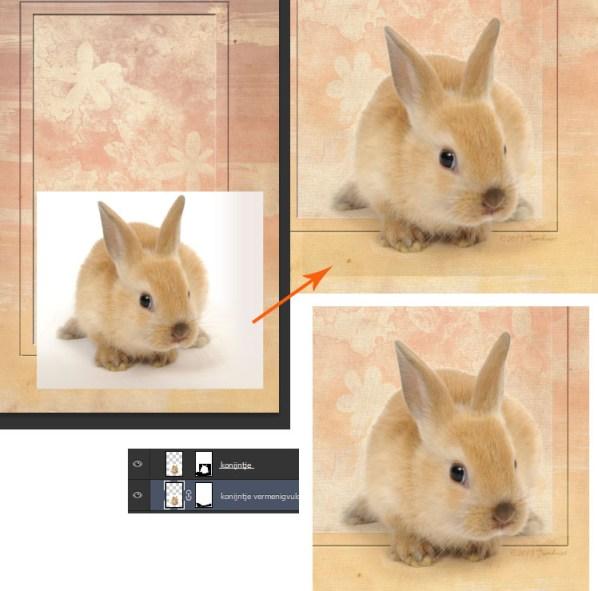 konijntje 12