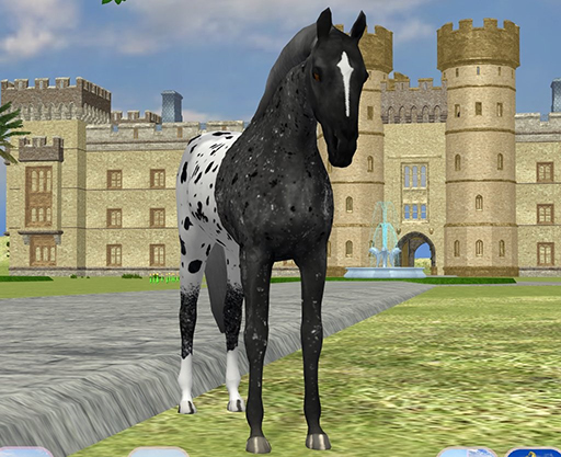 realistic horse breeds # 65