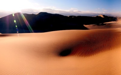 Shifting Sands in Online Learning