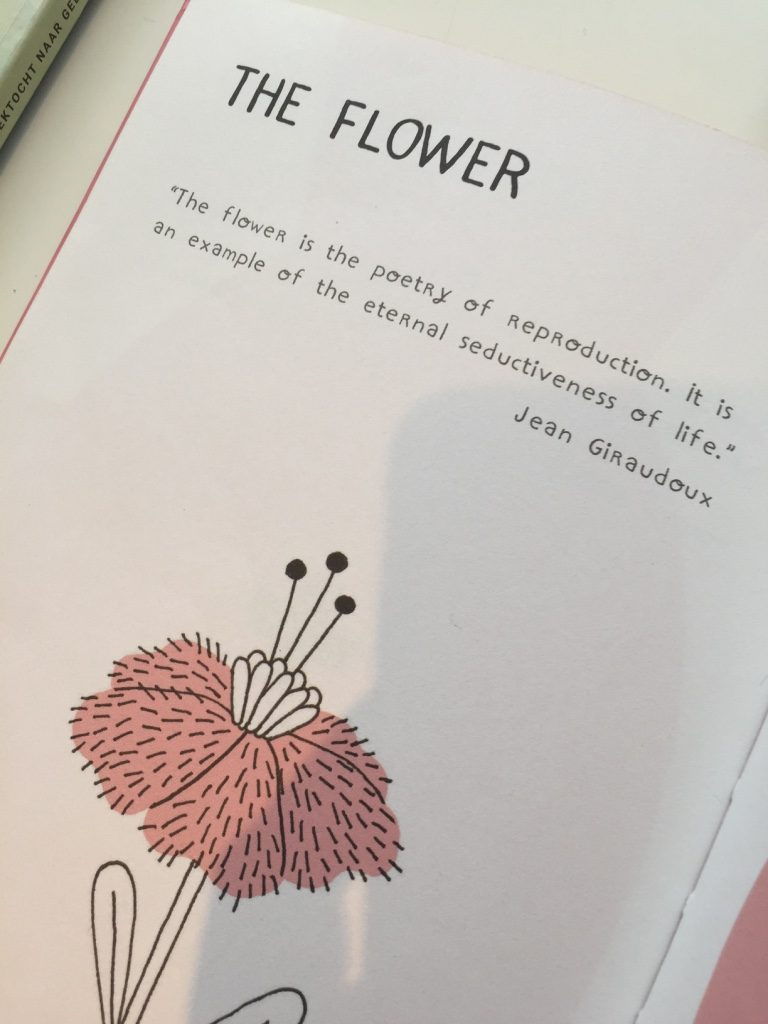 the flower beschrijving