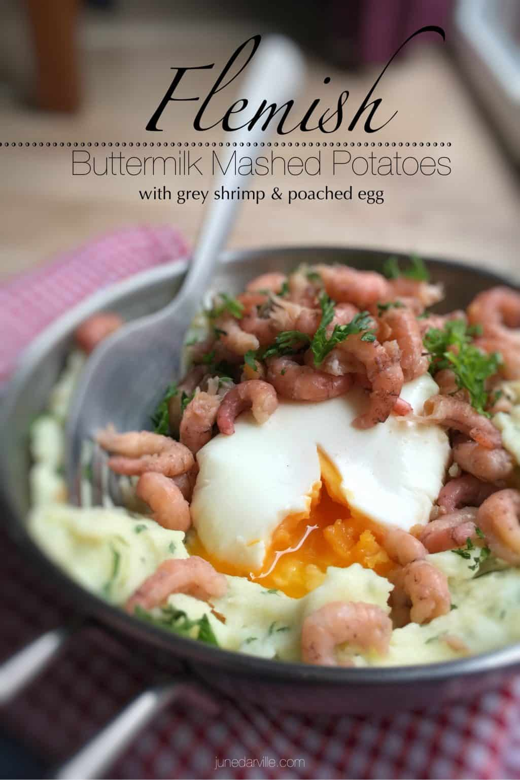 Classic Flemish buttermilk mashed potatoes with fresh grey shrimp, a creamy poached egg and drizzled with melted butter sauce...