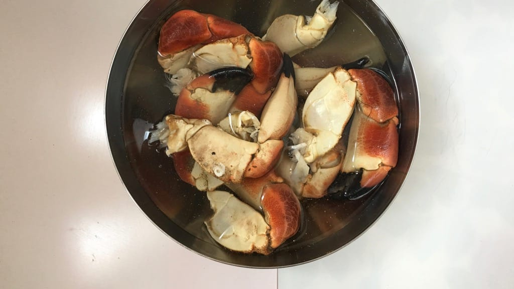Look at these gorgeous plump stone crab claws in a buttery cilantro sauce, what a great seafood dinner! Can't get enough of this stuff...