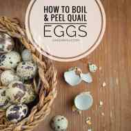 How To Boil And Peel Quail Eggs Best