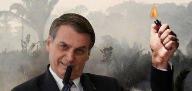 Nicht länger im Dunkeln: Amazonasbrände beleuchten Bolsonaros Wi