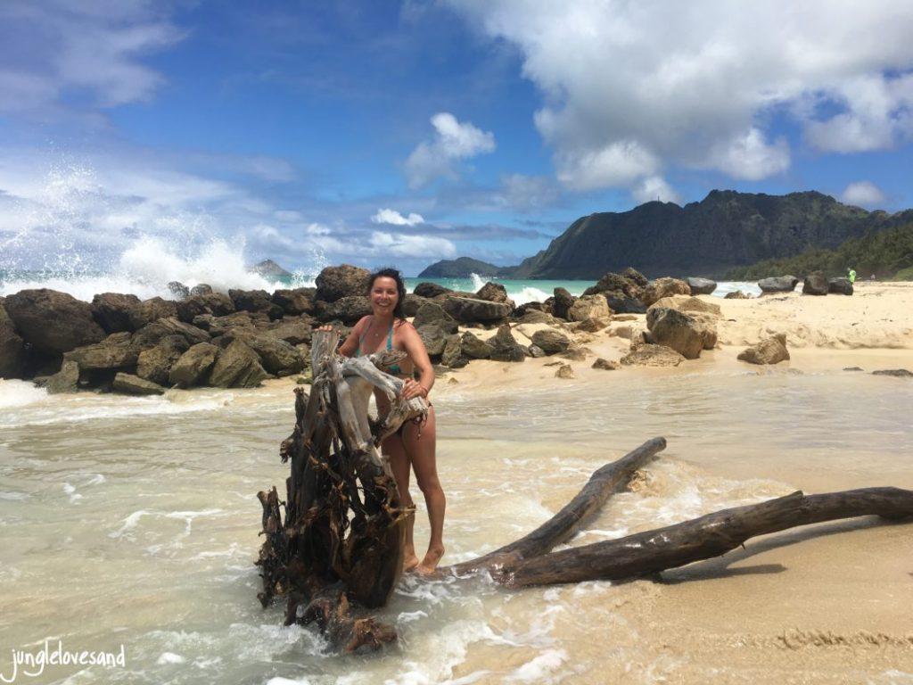 Hawaii (30)