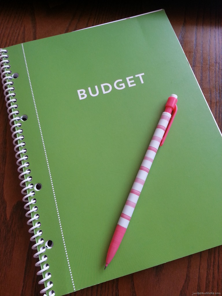 Michael S Recollection Budget Book