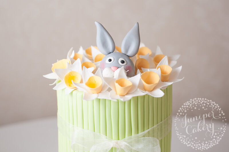 Bunny Rabbit and daffodil cake by Juniper Cakery