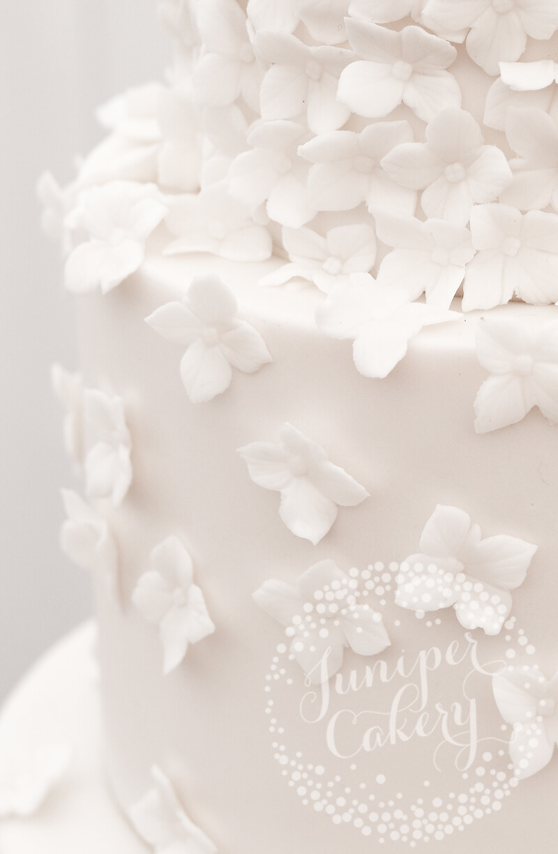 Elsham Hall white blossom wedding cake by Juniper Cakery
