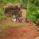 VIREHA : Un autre Haïtien pour une nouvelle Haïti 34