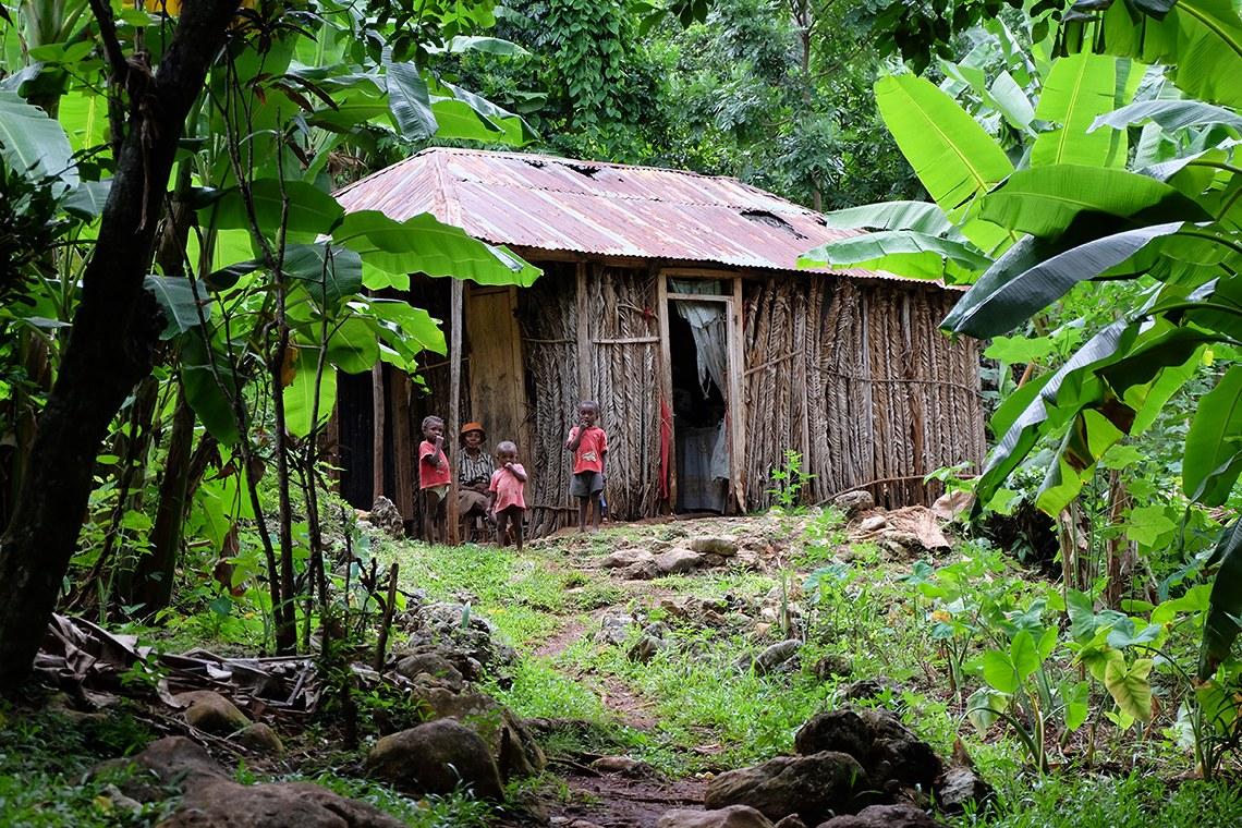 Konsome Lokal : Haïti Roots 28