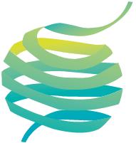 Logo PEMC 2019 2020