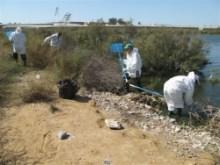Recogida de peces y utilización de bolsas para su transporte y reducción de posibles lixiviados y olores