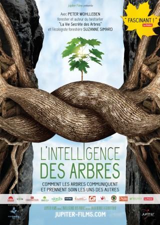 Intelligence des Arbres, L'