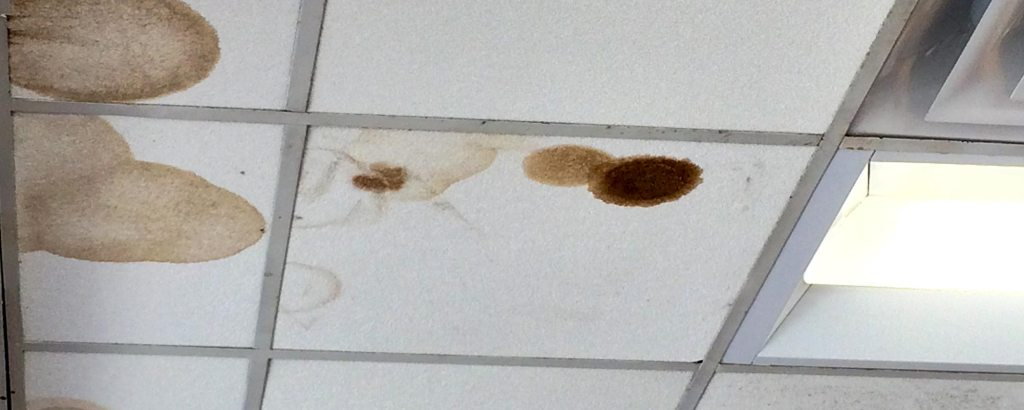 Mystery of a Roof Leak