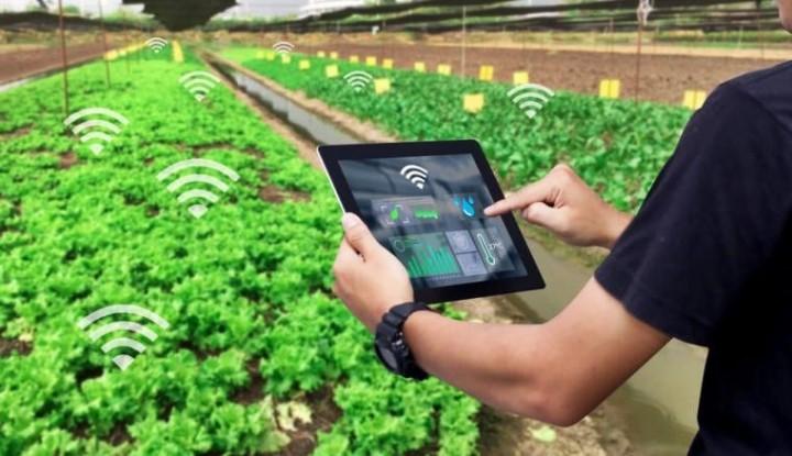 Teknologi Pertanian Untuk Tingkatkan Produktivitas Pangan