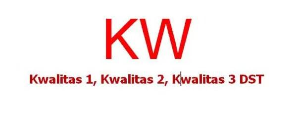 Perbedaan OEM dengan KW