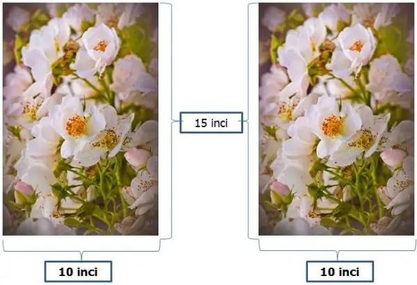 contoh ukuran foto 10R plus dalam satuan inci