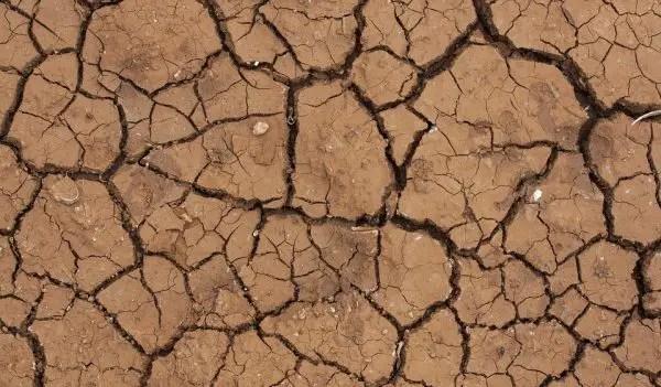 dampak pencemaran lingkungan tanah