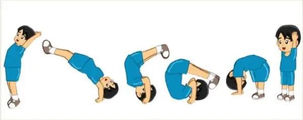 cara melakukan roll belakang