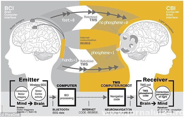 comunicare creier
