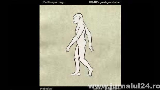 Video: 550 milioane ani a rasei umane reprodusă în acest videoclip