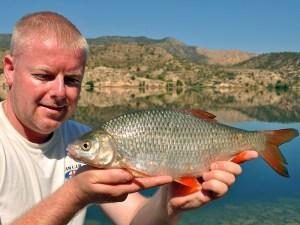 Shane Calton's 2lb River Ebro roach