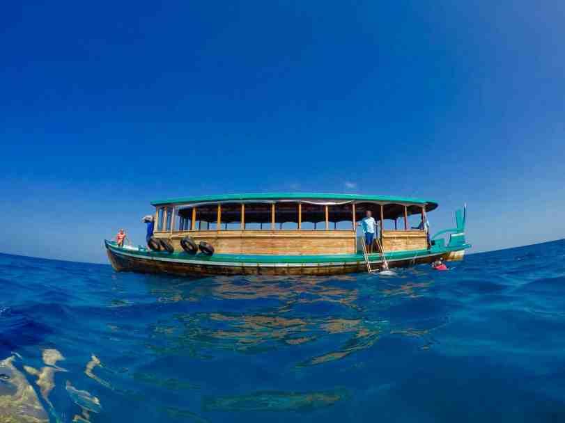 coco palm dhuni kolhu dive ocean maldives Auf geht's zum Tauchplatz: Das Baa Atoll rund um Coco Palm Dhuni Kolhu ist ein Paradies für Taucher! Foto: Sascha Tegtmeyer