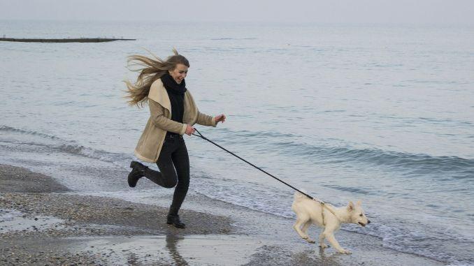 Ein Ostsee-Urlaub mit Hund ist ein unvergesslich schönes Erlebnis! Foto: Pixabay