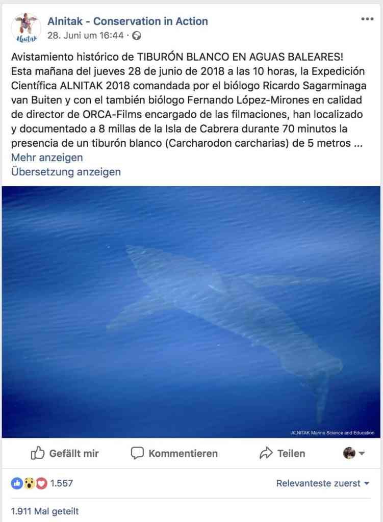 Auf ihrer Facebook-Seite facebook.com/alnitakmission/ hat die Organisation die Sichtung zuerst veröffentlicht. Screenshot: Facebook.com