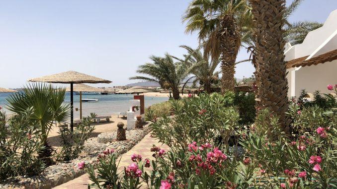 Ägypten - Urlaub 2019: Das Rote Meer liegt wieder voll im Trend! Foto: Sascha Tegtmeyer