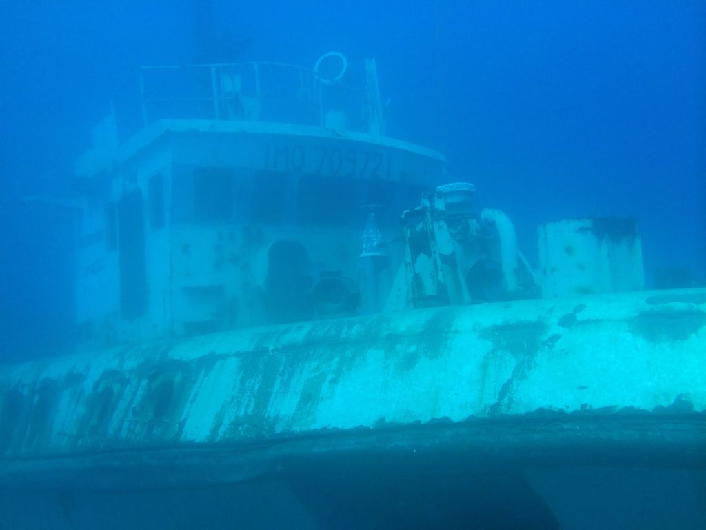 Mit einem Unterwassergehäuse für iPhone X oder andere Smartphones lassen sich beim Tauchen spannende Aufnahmen machen! (Die Aufnahme wurde mit einem iPhone gemacht) Foto: Sascha Tegtmeyer