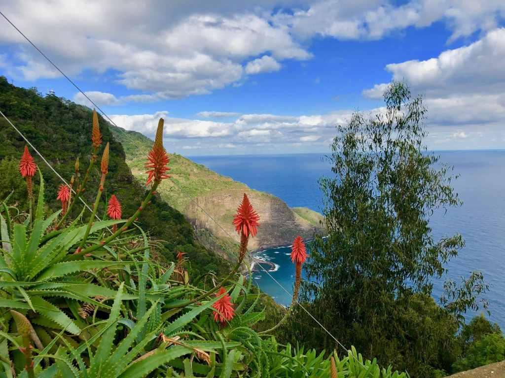 Madeira ist ganzjährig ein perfektes Ziel für Wanderreisen. Foto: Sascha Tegtmeyer