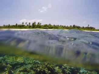 Schnorcheln im Urlaub: Wir geben Euch viele wertvolle Tipps für spannende Unterwasser-Touren auf Reisen. Foto: Sascha Tegtmeyer