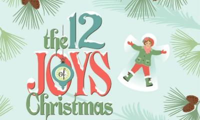 12 joys of christmas book