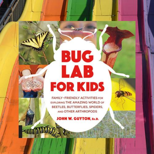 bug lab, bug lab for kids, science, entomology